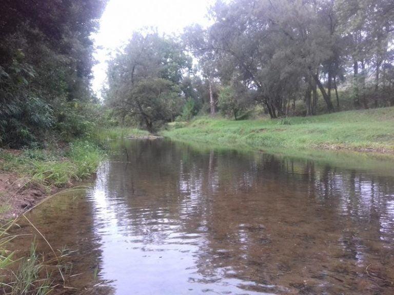 blaxlands creek blaxlands flat new south wales 768x576