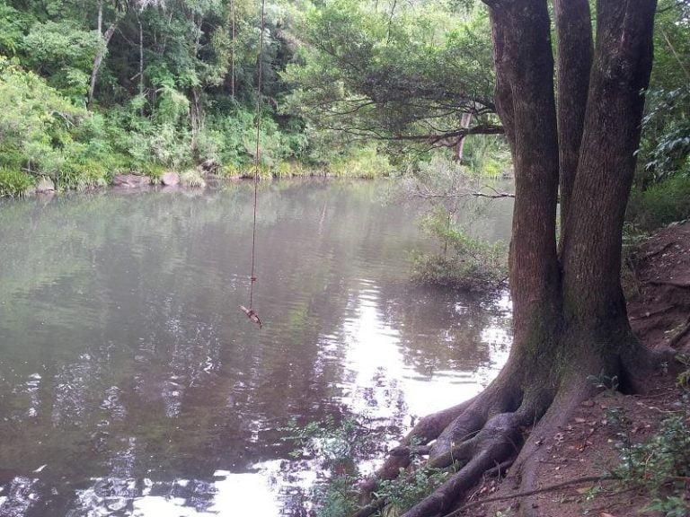 coopers creek rosebank new south wales 2 768x576