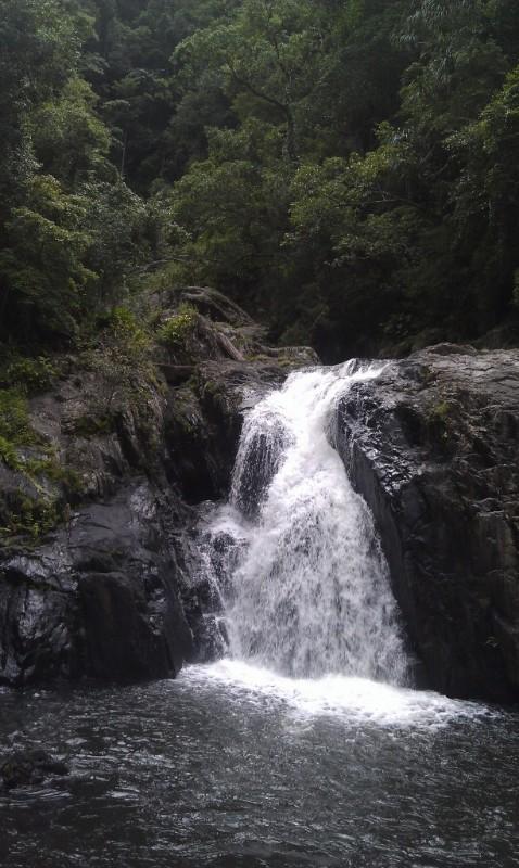 crystal cascades redlynch queensland