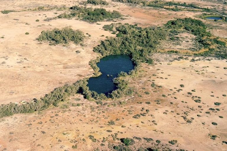 dalhousie springs witjira national park south australia 768x512