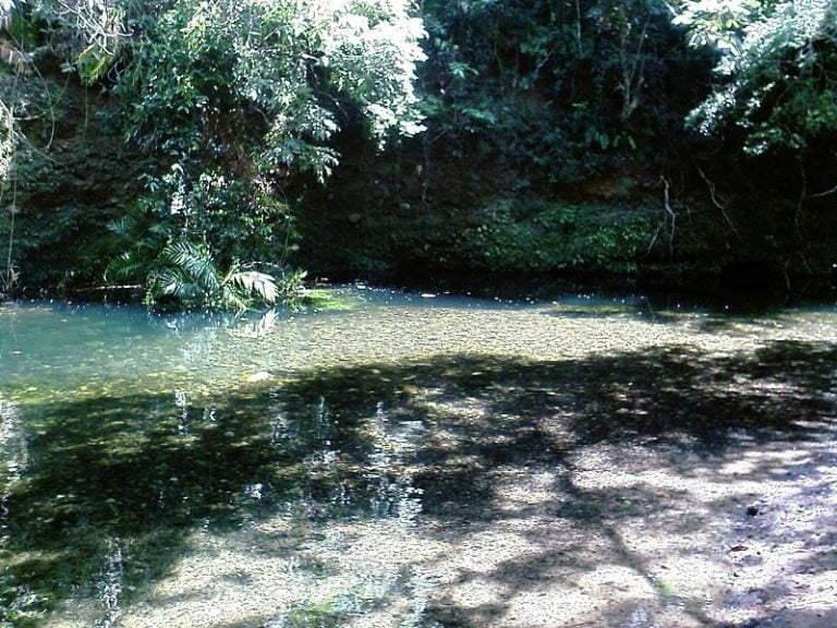 emmagen creek cape tribulation queensland 768x576
