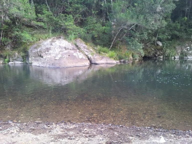 forest park swimming hole numinbah valley queensland 768x576