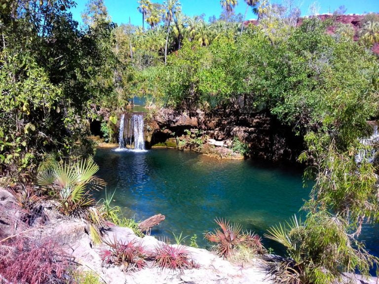 indarri falls lawn hill national park queensland 768x576