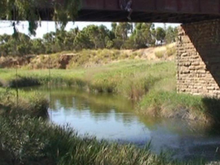kapunda swimming hole kapunda south australia 1 768x575