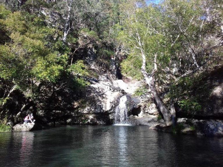 kondalilla falls kondalilla national park queensland 768x576