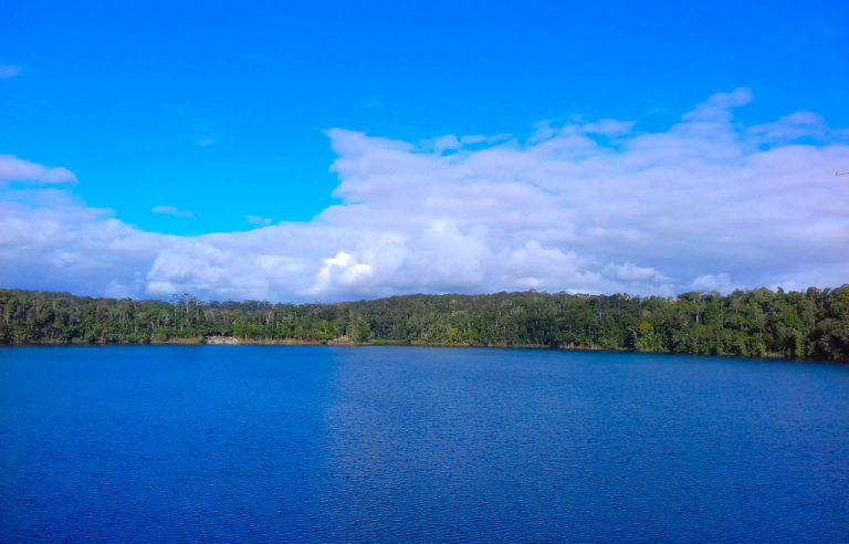 lake eacham crater lakes national park queensland 1 768x492