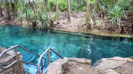 mataranka thermal springs mataranka northern territory