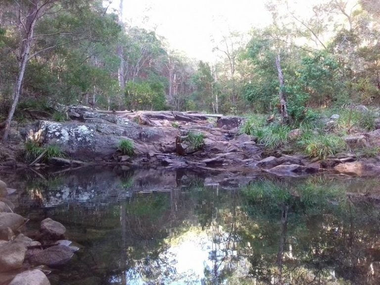 mothar mountain rock pools gympie queensland 768x576
