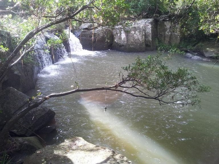 mount burrell swimming hole mount burrell new south wales 1 768x576