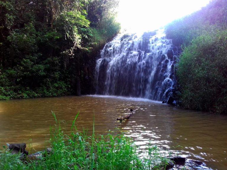 pepina falls millaa millaa queensland 768x576