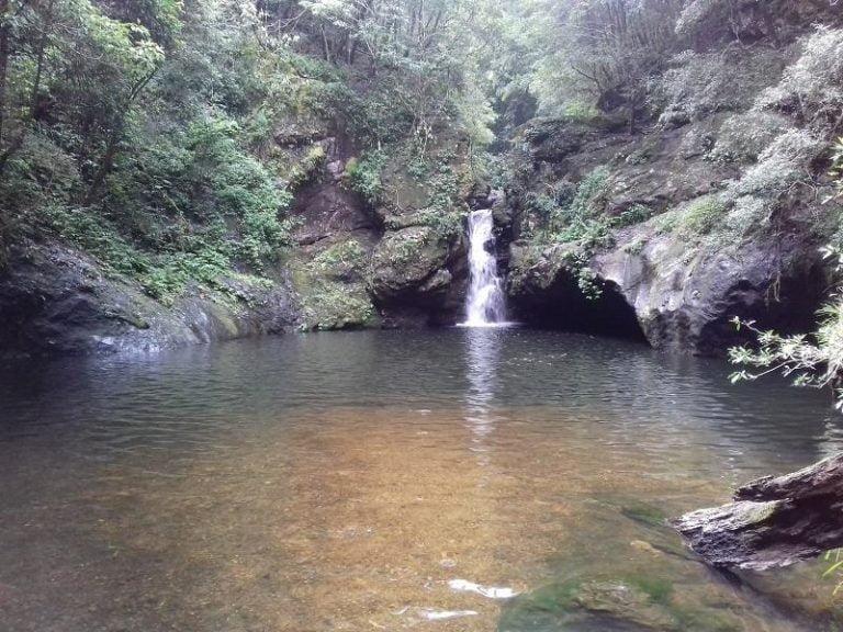 potoroo falls tapin tops national park new south wales 768x576