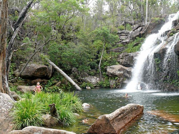 scouts falls sherwood nature reserve new south wales