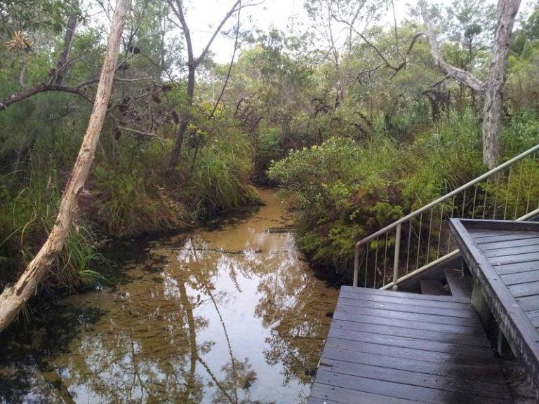 searys creek gympie queensland 1 768x576