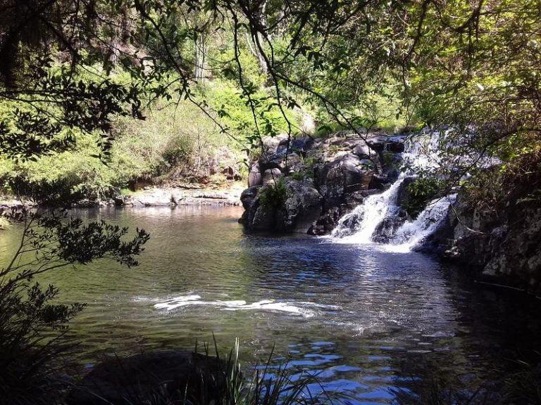 tehuti falls terania creek new south wales 768x576