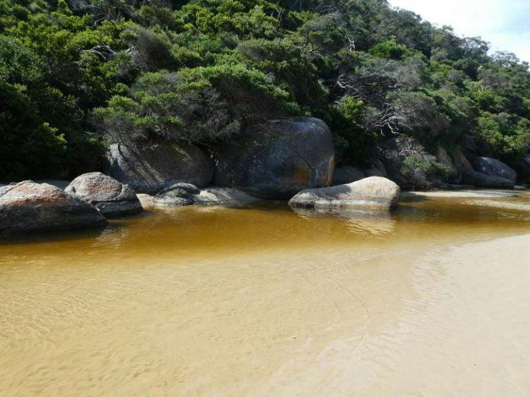 tidal river wilsons promontory victoria 768x576