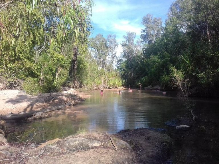 tjuwaliyn douglas hot springs douglas northern territory 1 768x576