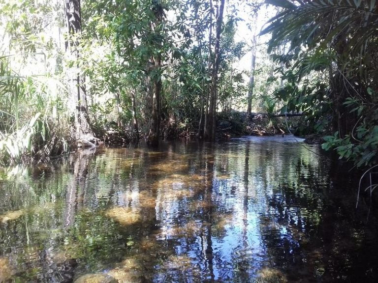 walker creek litchfield national park northern territory 768x576