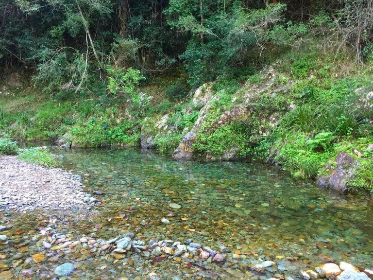 booloumba creek conodale national park queensland 768x576